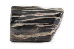 Noir antique de morceau en bois pétrifié de côté Photo stock