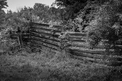 Noir blanc Photo libre de droits