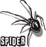 Noir d'araignée Photographie stock libre de droits