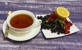 Noir de la vie, groseille rouge, demi citron et une tasse toujours de thé sur un fond foncé images stock
