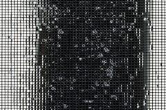 Noir et blanc Photo libre de droits