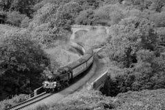 Noir et blanc, B&W toujours d'un train de vapeur, voyageant par une vallée boisée Image stock