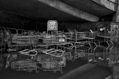 Noir et blanc des chariots en inondation Image stock