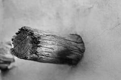 Noir et blanc du faisceau en bois de décomposition de la maison de sud-ouest Image libre de droits