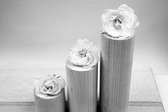 Noir et blanc, toujours composition en vie avec les morceaux géométriques en bois avec les roses blanches photo libre de droits