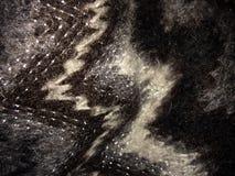 Noir et gris Photographie stock libre de droits