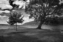 Noir et paysage de wight Images stock