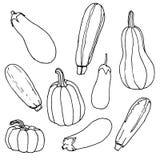 Noir et tandis que croquis, ensemble de divers légumes courgette, aubergine, potiron - illustration tirée par la main illustration de vecteur