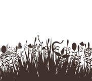 Noir floral de silhouette de vecteur Images libres de droits