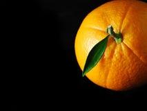 Noire orange Images libres de droits