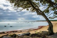 Noirmoutier Island Stock Photos
