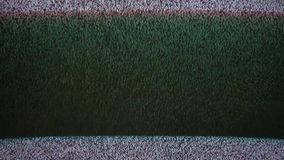 Noise interference bad signal tv screen the television stock footage