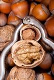 Noisette et noix criquées à l'intérieur d'un rétro casse-noix Image stock