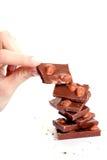 noisettes de chocolat Photographie stock libre de droits