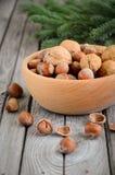 Noisettes et noix dans une cuvette en bois Photos stock