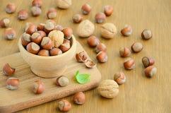Noisettes et noix dans une cuvette en bois Image stock