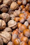 Noisettes et noix sèches Photos libres de droits