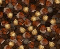 Noisettes tirées par la main de texture de noix illustration de vecteur