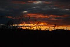 Noite ardente Foto de Stock