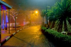 Noite chuvosa tropical fotografia de stock