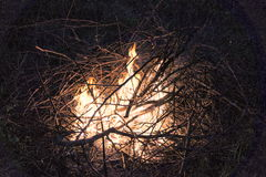 Noite da fogueira Imagem de Stock