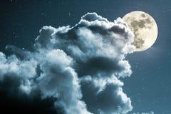 Noite da Lua cheia Fotografia de Stock