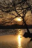 Noite da mola Imagem de Stock Royalty Free
