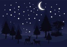 Noite da silhueta na imagem do vetor da paisagem da floresta ilustração royalty free