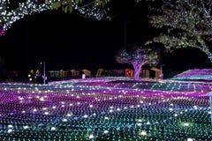 Noite de Coreia do festival da iluminação da luz de Illumia imagens de stock royalty free