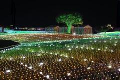 Noite de Coreia do festival da iluminação da luz de Illumia fotos de stock