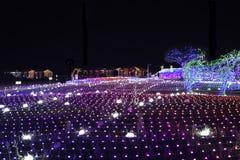 Noite de Coreia do festival da iluminação da luz de Illumia imagens de stock