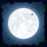 Noite de Dia das Bruxas com aranhas Fotos de Stock Royalty Free