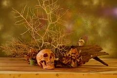 Noite de Dia das Bruxas em Banguecoque Thailnd Foto de Stock Royalty Free