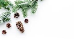 A Noite de Natal ajustou-se com ramos spruce e os cones do pinho no fundo branco cobrem o modelo do veiw Imagem de Stock