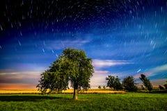 Noite de verão Imagem de Stock