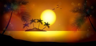 Noite de verão Palmeiras no fundo do por do sol Foto de Stock Royalty Free