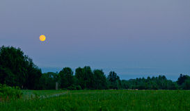 Noite de verão quieta Foto de Stock
