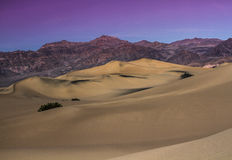 Noite do deserto Imagem de Stock