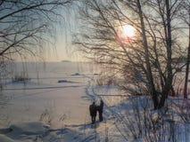 Noite do inverno Foto de Stock Royalty Free