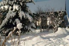 Noite do inverno, cabana Imagem de Stock