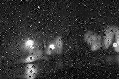 Noite do inverno chuvoso Fotografia de Stock Royalty Free