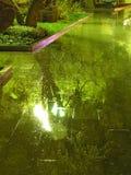 Noite do inverno na sombra Imagem de Stock Royalty Free
