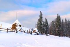 Noite do inverno na vila Fotografia de Stock
