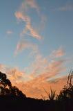 Noite do por do sol, Austrália Foto de Stock