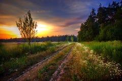 Noite do verão Imagens de Stock