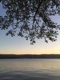 Noite do verão no lago Imagens de Stock Royalty Free