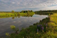 Noite do verão no rio fotos de stock