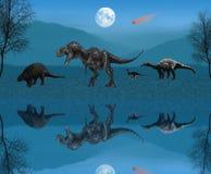 Noite dos animais selvagens ilustração do vetor