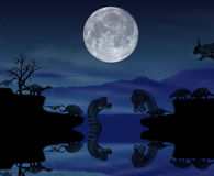 Noite dos animais selvagens com os dinossauros na história ilustração stock