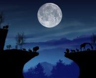 Noite dos animais selvagens em África ilustração stock